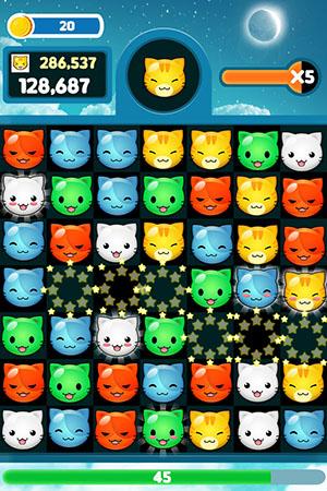 swap cats ss1@300