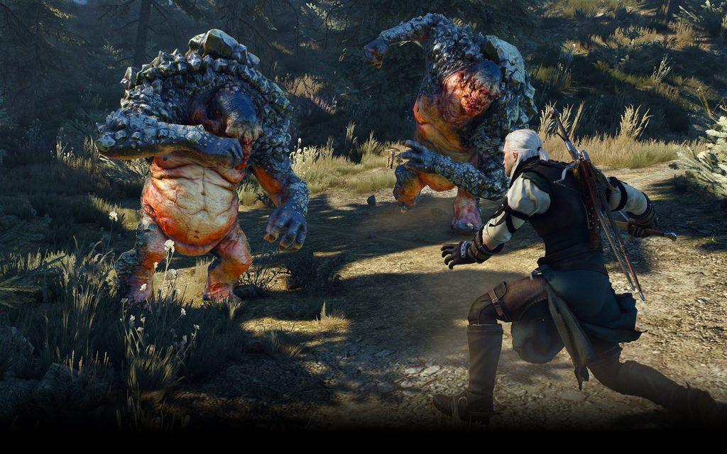 the witcher 3 e