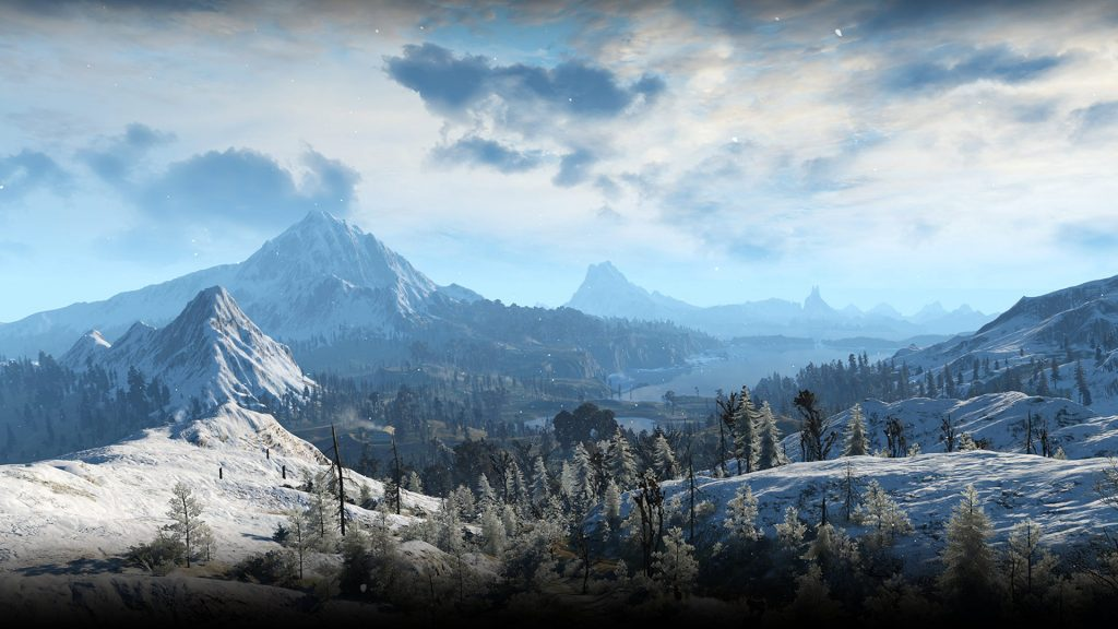 the witcher 3 f