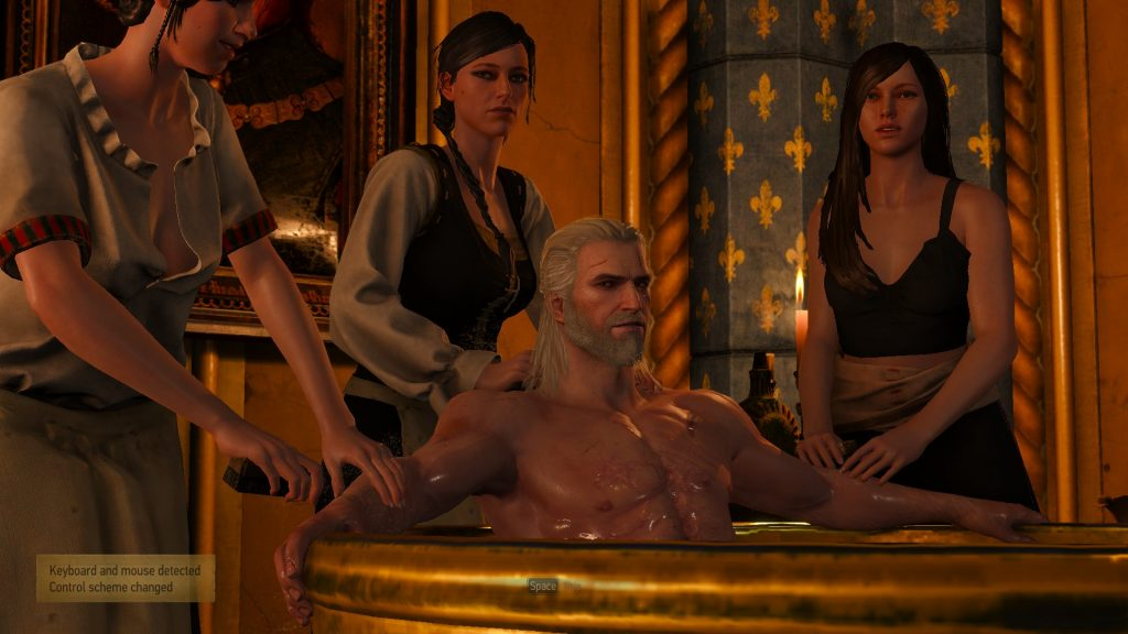the witcher 3 ss