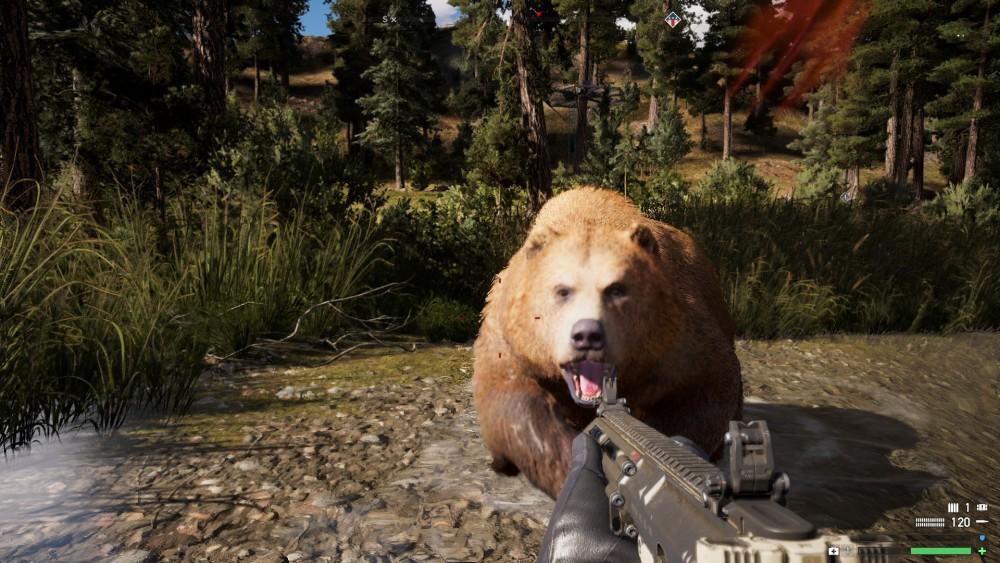 Far Cry 5 Bear
